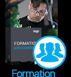 formation-apicommerce