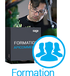 formation-apicommerce